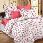 Story@Home Magic Cotton Double Bedsheet with 2 Pillow Covers