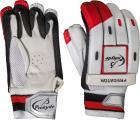 Prokyde Predator Batting Gloves (Boys, Multicolor)
